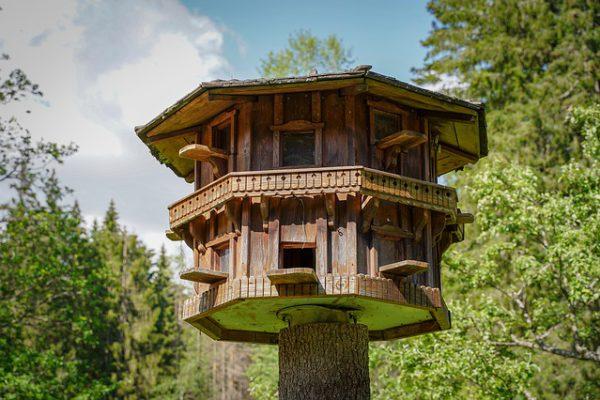 budowa domku drewnianego